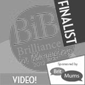 Brilliance in Blogging Award Finalist 2012