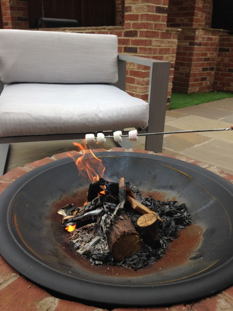 toasting marshmallows on the fire pit
