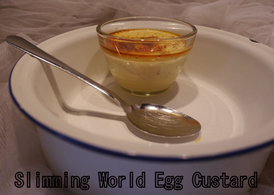 Slimming World Egg Custard