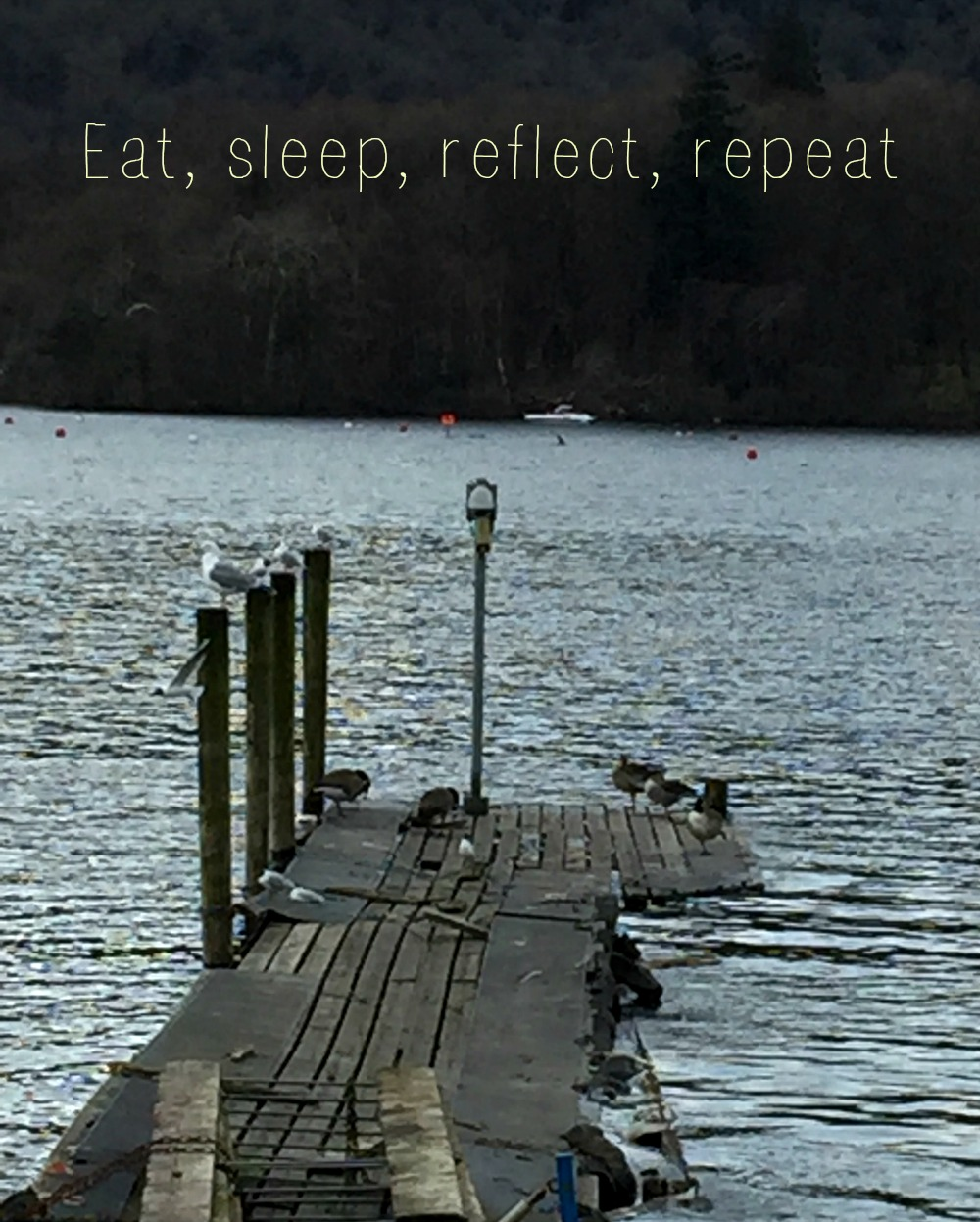 eat sleep reflect repeat hero shot