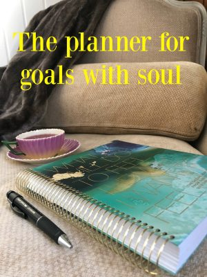 goals with soul hero shot #shop #cbias