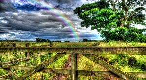 Cheshire rural rainbow country